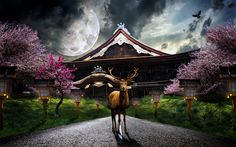 京都 - アート
