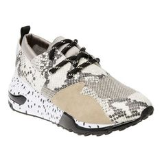 745a65df478 Women s Steve Madden Cliff Sneaker - Natural Snake Print Leather Sneakers