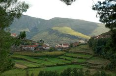 Parque natural do Alvão-Trás os Montes - PORTUGAL