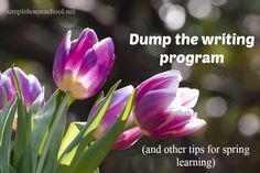 Has spring arrived in your neighborhood? Kris encourages you to dump the writing program & embrace seasonal learning during this short window of time!
