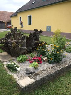 Patio, Outdoor Decor, Plants, Home Decor, Lawn And Garden, Decoration Home, Room Decor, Plant, Home Interior Design