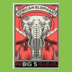 Series of postcards depicting the big 5 of Africa