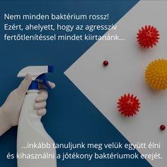 Ez azért probléma, mert sajnos a fertőtlenítéssel a jótékony baktériumokat is éppúgy elpusztítottad, mint a kórokozókat. :( Pedig ezeknek fontos szerepük van az immunrendszer megfelelő védelmében! Nem minden baktérium rossz, ne irtsuk ki őket mind, hanem tanuljunk meg velük együtt élni és megtalálni az egyensúlyt. Ehhez nyújt segítséget a SanoD'or Nature probitikus tisztítószer család. Minion, Cleaning, Healthy, Minions
