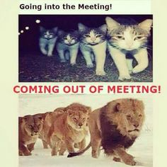 Meetings are such an important part of our lives.