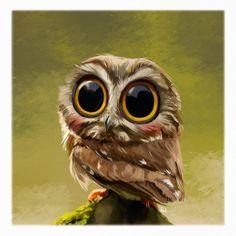 Big eyed owl cuteness