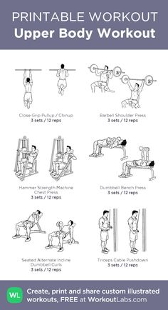 Upper Body Workout:my custom printable workout by @WorkoutLabs #workoutlabs #customworkout