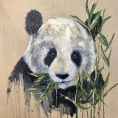 Beautiful original oil painting of a panda. Oil painting on linen canvas by Louise Luton Panda Painting, Lion Painting, Painting Canvas, Acrylic Painting Animals, Painting Flowers, Animal Sketches, Animal Drawings, Art Drawings, Bear Paintings
