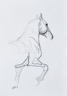 Trotting Horse Sketch by benedictegele on Etsy