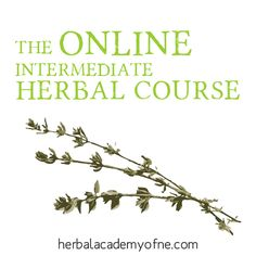 Online Herbalist Training Program now enrolling. Your online doorway into the wild and wonderful world of plant medicine #learnherbs