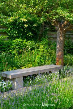 Garden in Wimbledon 7 Charlotte Rowe copyright Marianne Chelsea Flower Show, Back Gardens, Small Gardens, Wimbledon, Garden Seating, Outdoor Seating, Vegetable Garden Design, White Gardens, Garden Structures