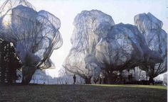 Wrapped Trees | Christo and Jeanne-Claude