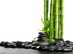 decorazioni in stile zen - Cerca con Google