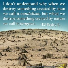 I don't understand why when we destroy something created by man we call it vandalism, but when we destroy something by nature we call it progress. (Ed Begley, Jr. Great Quotes, Funny Quotes, Quotable Quotes, Inspirational Quotes, Fabulous Quotes, Motivational Posts, Truth Quotes, Random Quotes, Positive Quotes