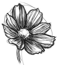 how to draw a daisy Easy Flower Drawings, Flower Sketches, Drawing Sketches, Tattoo Sketches, Sketching, Daisy Drawing, Daisy Painting, Gerbera Daisy Tattoo, Daisies Tattoo