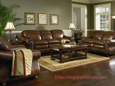 Living Room Colour Schemes Brown Sofa Decor Ideas With Leather Couches 67 Best Coach Images Couch And Curtains Orange Baby Blue Rooms Sets Designs Colours Decoration Dark