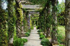 West Dean Gardens - Sussex | Flickr - Photo Sharing!