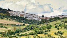 Prado del Rey - Sierra de Cadiz - Andalousie - Mai 2012