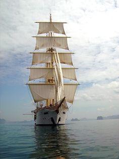 "shipsshipships: ""Star Clipper """