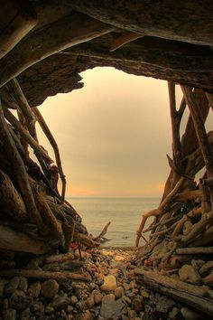 Driftwood, Swansea, Toronto, Canada photo via beautiful Swansea, Beautiful World, Beautiful Places, Peaceful Places, Simply Beautiful, Portal, Belleza Natural, The Great Outdoors, Wonders Of The World