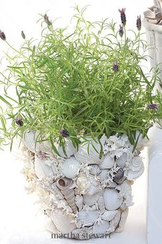 This display is all about contrast. Apply just an artful cluster of barnacles, as if the vessel survived a shipwreck and lay undiscovered for years on the ocean floor or covered in shells. If you can wield a glue gun, you can make these distinctive pots. #marthastewart #crafts #diyideas #easycrafts #tutorials #hobby
