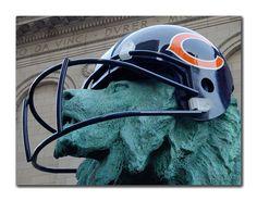 GO CHICAGO BEARS!!!