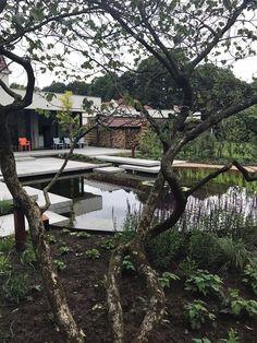 Opgeleverd voorjaar 2017; duurzame tuin In Glimmen. Schellevis beton, vijver, cortenstaal, prairieborder, halfverharding. Outdoor Furniture, Outdoor Decor, Garden Bridge, Outdoor Structures, Park, Modern, Trendy Tree, Parks, Backyard Furniture