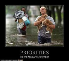 Priorities.  However it would be a dog and cat for me.