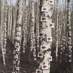 """296 Likes, 7 Comments - Bora Bohème (@bora_boheme) on Instagram: """"The perfect place if you're looking for attention. 