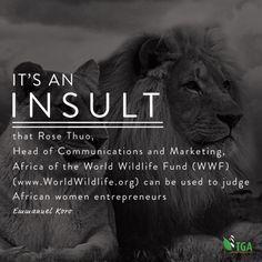 African Women, Conservation, Wildlife, Environment, Marketing, News, Rose, World, Pink