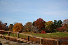 #ridecolorfully Old North Bridge, Concord, MA