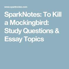 essays expository