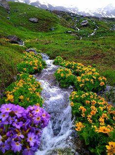 Beautiful wild nature in Kurdistan, Iran Beautiful Places, Beautiful Pictures, Persian Architecture, Iran Travel, Beautiful Nature Wallpaper, Wild Nature, Nature Scenes, Landscape Photos, Nature Pictures