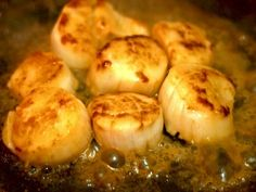 Cooking: What are some good recipes for scallops? - Quora