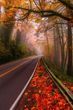 Germantown Road, Portland, Oregon