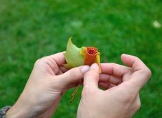 Розы из осенних листьев.. Обсуждение на LiveInternet - Российский Сервис Онлайн-Дневников