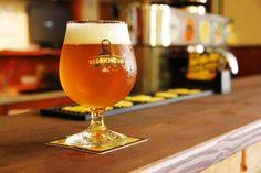 "Litomysl lager beer: ""Bedrichova jedenactka"", available at restaurant Veselka."