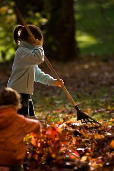 A fantastic time of year for the little ones to have some fun, connect with nature and  acquire a bit of responsibility.