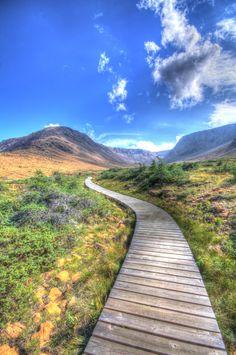 Boardwalk leading through The Tablelands in Gros Morne National Park in Newfoundland