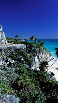 Tulum, Yucatan, Mexico. Forest and beach wild beauty.