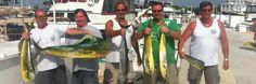 key west charter fishing : florida keys deep sea fishing : florida sport fishing : key west sunset cruises