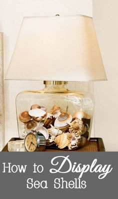 After your beach vacation, you probably came home with a collection of sea shells.   But what do you do with them instead of keeping them in a box in the top of your closet?   Here are some ideas for displaying your sea shells.