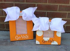 Handpainted University of Tennessee picture frame