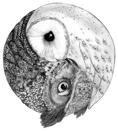owls, tattoos, and photos