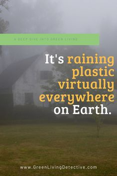 A new study found plastic particles in the rain in a remote part of the U.S.   The most alarming question this study raises is how much plastic waste permeates the air, water and soil of Earth, regardless of proximity to urban areas? Scientists say plastic is virtually everywhere on Earth, and often more than we can see. Follow the link to find out more. >>>> #science #studies #rain #plasticpollution #plastic #plasticfree #toxicfree #chemicals #nature #greenliving #sustainablehome Plastic Pollution, Plastic Waste, Scientists, My House, How To Find Out, Remote, Rain, Study, Science