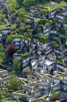 Curiosidades del Mundo: Techos verdes y apartamentos botánicos. Like this. #techosverdes #techoverde