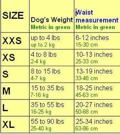 (9) Name: 'Sewing : Dog Diaper Pattern Sizes XXS-XS-S-M-L-XL                                                                                                                                                     More