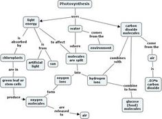 photo synth concept map