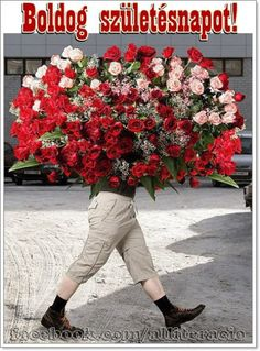 Mega large red roses blended with pink roses Flowers Gif, Red Flowers, Red Roses, Pretty Flowers, My Flower, Flower Power, Flower Center, Bloom Where Youre Planted, Special Flowers