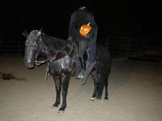 My dream costume for me and my Percheron/TWH cross, who's black and will be 17 hands!