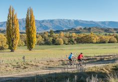 Otago Central Rail Trail » Official Website of NZ's Original Great Ride!